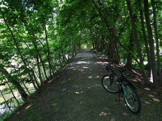 Bike & Cayuga st trail