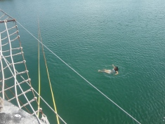 I jumped from the Black Pear into the water. Fun!