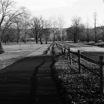The trail where I love to jog the most:-)
