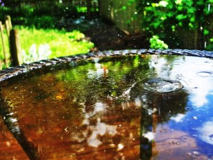 I took a picture of water falling on a small table in the back yard. I love the rain!